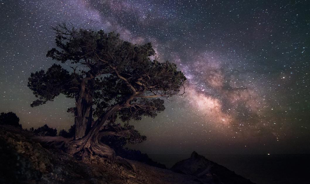 В можжевеловой роще / Тихая майская ночь. Гуляет лёгкий ветерок, издали доносится шум прибоя, а воздух веет ароматом можжевельника. Впереди виднеется острый пик мыса Капчик, а над морем проплывает Млечный Путь — маленькая частица бескрайней Вселенной