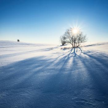 Мороз и Сонце...